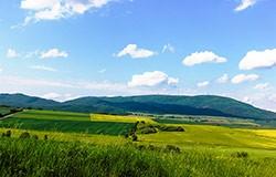 Raderlebnisregion Alsenztal